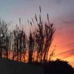 coucher de soleil 3 Pérols