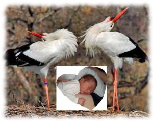 naissance de Samuel